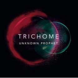 Trichome. Unknown Prophet. Performing at jazz festivals including the North Sea Jazz Festival. 1 CD