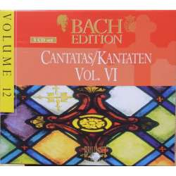 Bach: Kantater Vol. 6. Pieter Jan Leusink. Bach Collegium. 5 CD. Brilliant Classics