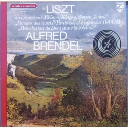 Liszt: Famous Piano works. Alfred Brendel. 1 LP. Philips. 9500286